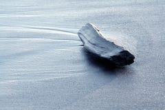 Drijfhout op een strand stock fotografie