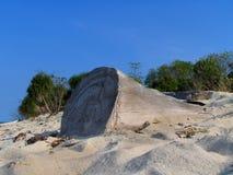 Drijfhout op tropisch strand. stock foto's
