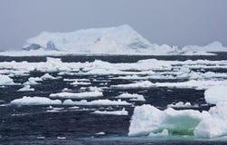 Drijfijs Antarctica, Dryftowy lód Antarctica zdjęcie stock