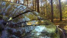 Drijvend een auto, in een bos, beoogde de camera de bestuurder