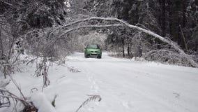 Drijvend langs weg met gevallen bomen, na intens ijsonweer stock footage