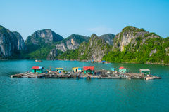 Drijvend visserijdorp in Halong-Baai Royalty-vrije Stock Foto's