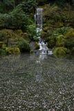 Drijvende bloembloemblaadjes (landschap) Royalty-vrije Stock Foto's