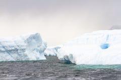 Drijvende ijsbergen, Antarctica Stock Afbeeldingen