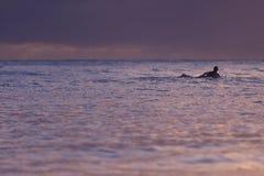 Drijvende surfer Stock Foto's