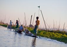 Drijvende tuin op Inle meer, Shan staat, Myanmar royalty-vrije stock afbeelding