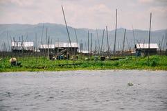 Drijvende tuinen in Taunggyi, Inle-Meer stock fotografie