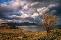 Drijvende Wolken Stock Afbeeldingen