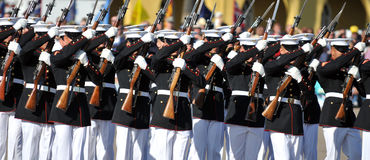 Drill Team Perfection. Soldiers of the United States Marine Corps Silent Drill Team Royalty Free Stock Photo