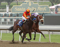 Drill Wins The San Vincente Stakes Royalty Free Stock Photography