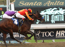 Drill Wins The San Vincente Stakes Royalty Free Stock Photo
