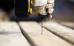 Drilling a screw into,wood Royalty Free Stock Photos