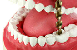 Drilling a tooth Royalty Free Stock Photo