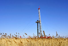 Drilling tower and reed. Stands in the plains on the drilling tower Stock Photography