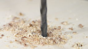 Drilling into Wood. Close-up video of drilling into Wood stock footage