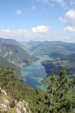 Drina river canyon viewpoint Banjska stena Tara mountain. Landscape royalty free stock images