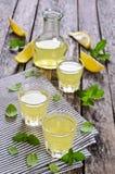 Drink av citronen arkivbild