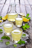 Drink av citronen royaltyfri bild