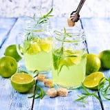 Drink av limefrukt och dragon arkivfoto