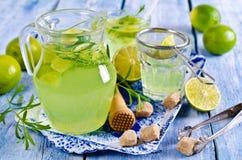 Drink av limefrukt och dragon royaltyfri bild