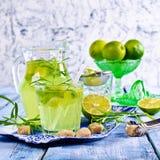 Drink av limefrukt och dragon royaltyfri fotografi