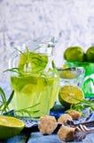 Drink av limefrukt och dragon royaltyfria foton