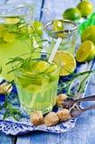 Drink av limefrukt och dragon fotografering för bildbyråer