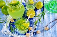 Drink av limefrukt och dragon royaltyfri foto