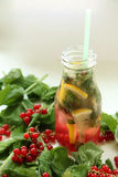 Drink av mintkaramellen, citronen och den röda vinbäret i flaska royaltyfri bild