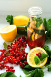 Drink av mintkaramellen, citronen och den röda vinbäret i flaska arkivbilder