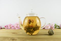 drink av te med blommablom inom en glass tekanna royaltyfri fotografi