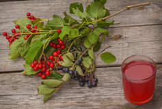 Drink and a branch of viburnum Stock Photography