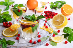 Drink with citrus and berries Royalty Free Stock Images