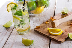 Drink with citrus fruit and ice Stock Images