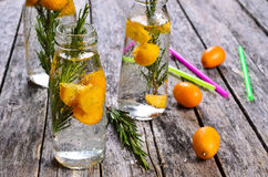 Drink with citrus and rosemary Stock Photography