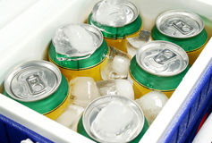 Drink Cooler 3 Royalty Free Stock Photo