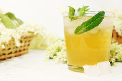 Drink from elder with mint. A cold refreshing summer drink made from elder flowers and mint Stock Image