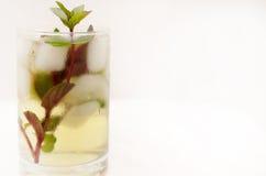 Drink för Kentucky derby i en glass bägare på en ljus bakgrund royaltyfria bilder