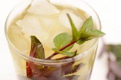 Drink för Kentucky derby i en glass bägare på en ljus bakgrund Arkivbilder