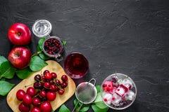 Drink för sommarisfrukt med äpplet, pulm och tranbäret på svart copyspace för bästa sikt för tabell royaltyfri bild