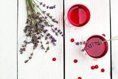 Drink för tranbär (röda bär) i exponeringsglas royaltyfria bilder