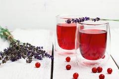 Drink för tranbär (röda bär) i exponeringsglas royaltyfria foton