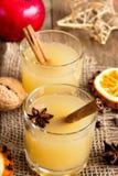 Drink för varm toddy för jul royaltyfri fotografi