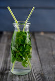 Drink of fresh mint in glass bottle Stock Photography