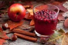 Drink From Cowberry And Cranberry Royalty Free Stock Image