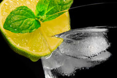 Drink of gin and tonic. A drink with a ice, a lime and a spearmint Royalty Free Stock Photo