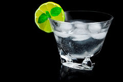 Drink of gin and tonic. A drink with a ice, a lime and a spearmint Stock Photography