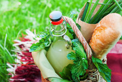Drink Greens Picnic Basket Baguette Onions Country Stock Photos
