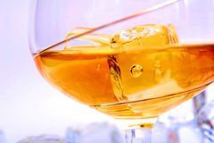 Drink with ice cube. Alcohol drink with ice cube in the cristal glass Stock Photography