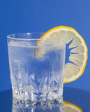 Drink with Ice and Lemon Slice Royalty Free Stock Photography